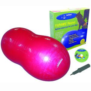PEANUT fra FitPAWS 80 til genoptræning og kropskontrol Fit For Core