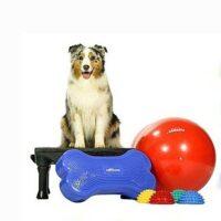 BOKS UDSTILLING Lille Hund fitforcore.dk 4 forskellige redskaber