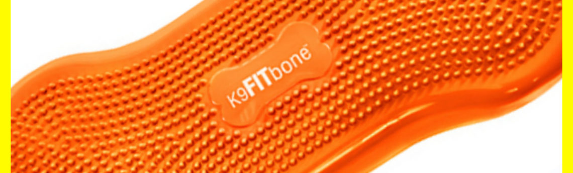 K9FITbone – Orange