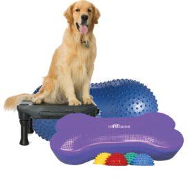 FitPAWS hundetræningsudstyr hundeudstilling agility