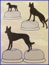 hundeudstyr til kæledyr